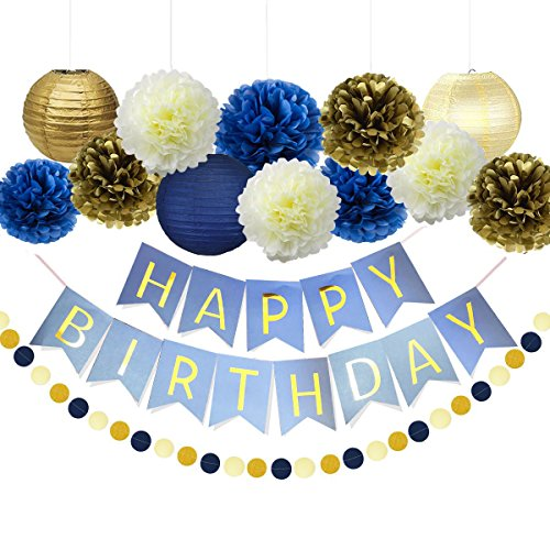 1st Birthday Boy Prince Party Supplies Navy Gold Birthday Party Decorations Blue Happy Birthday Banner Paper Star Garland Paper Flowers Tissue Paper Pom Poms Paper Lanterns for Boy First 1st -