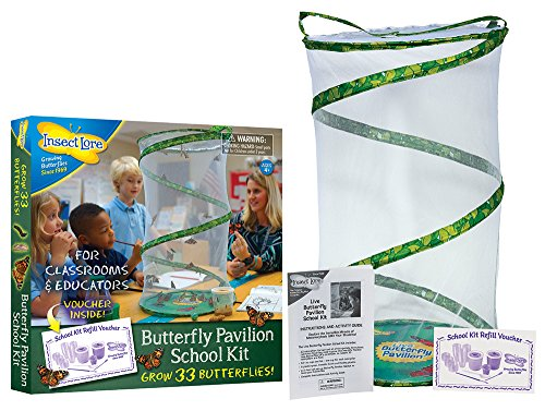 Insect Lore Butterfly Pavilion School Kit with Voucher