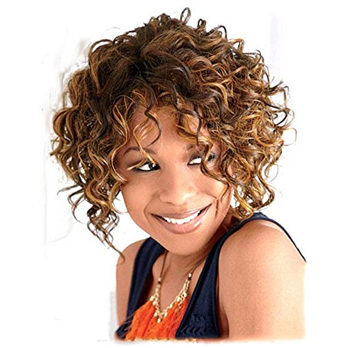 [B-G Fashion Hair Wigs Short Curly Wave Wigs for Black Women with Wig Cap WIG057] (Curly Wigs For Black Hair)