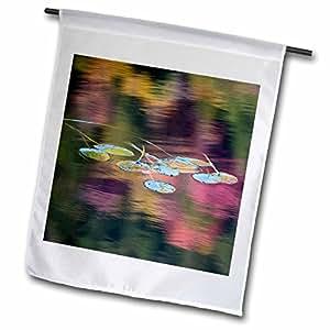 Danita Delimont - Flora - New York, Adirondack Mountains. Lily pad flora - US33 BJA0053 - Jaynes Gallery - 12 x 18 inch Garden Flag (fl_93064_1)
