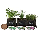 Cedar Planter Box - Complete Herb Garden Indoor Kit - Herb Growing Kit - Grow Cooking Herbs Basil, Chives, Thyme, Oregano, Parsley & Cilantro