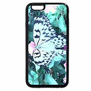iPhone 6S Plus Case, iPhone 6 Plus Case, panggasius babe