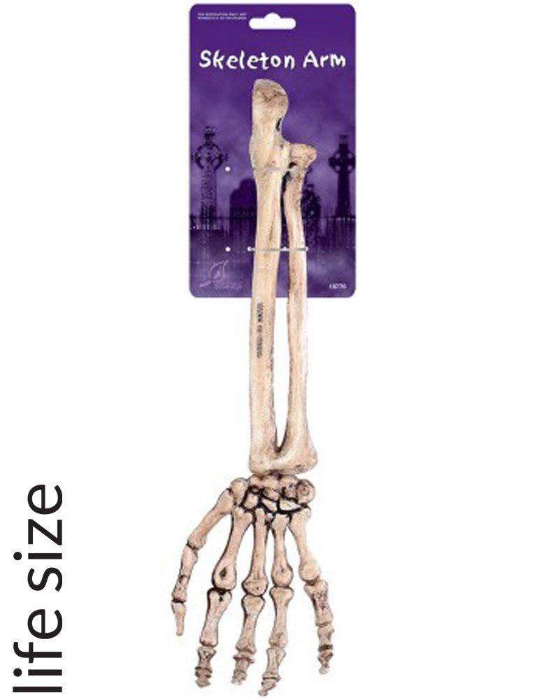 Amazon 145 Spooky Horror Plastic Skeleton Arm Halloween