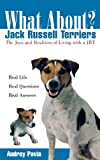 Jack Russell Terriers, Audrey Pavia, 0764540890