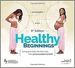 healthy beginnings giving your baby the best start from preconception to birth