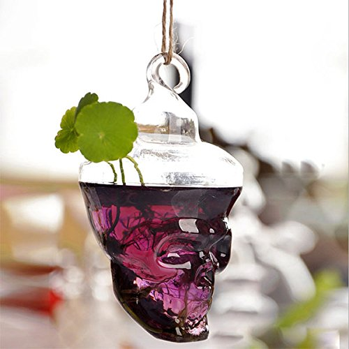 Garden Landscaping & Decking - Hydroponic Plants Garden Flower Pot Skull Shape Hanging Glass Vase - Form Glaze Physique Spyglass Condition Looking Contour Drinking Build Field - 1PCs by Unknown