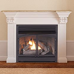 "ProCom FBNSD400T-ZC Dual Fuel Ventless Gas Fireplace Insert, 29.5"" H x 29.1"" W x 15.6"" D, Black from ProCom"