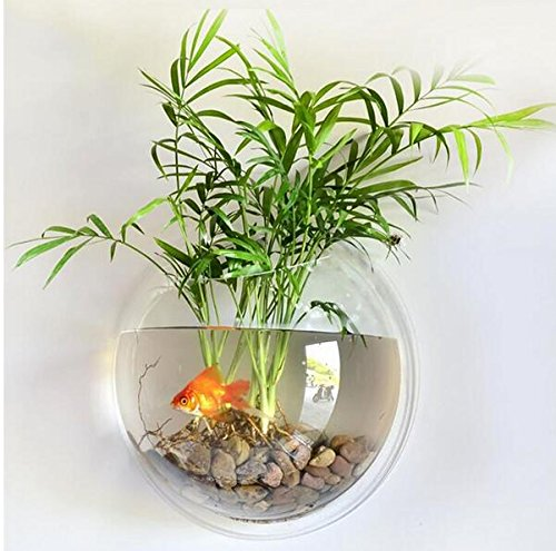 Kangkang@ 15cm Diameter Mini Acrylic Round Wall Hanging Aquarium Tank Mount Fish Bowls Tank Flower Plant Vase Home Decoration (Clear)