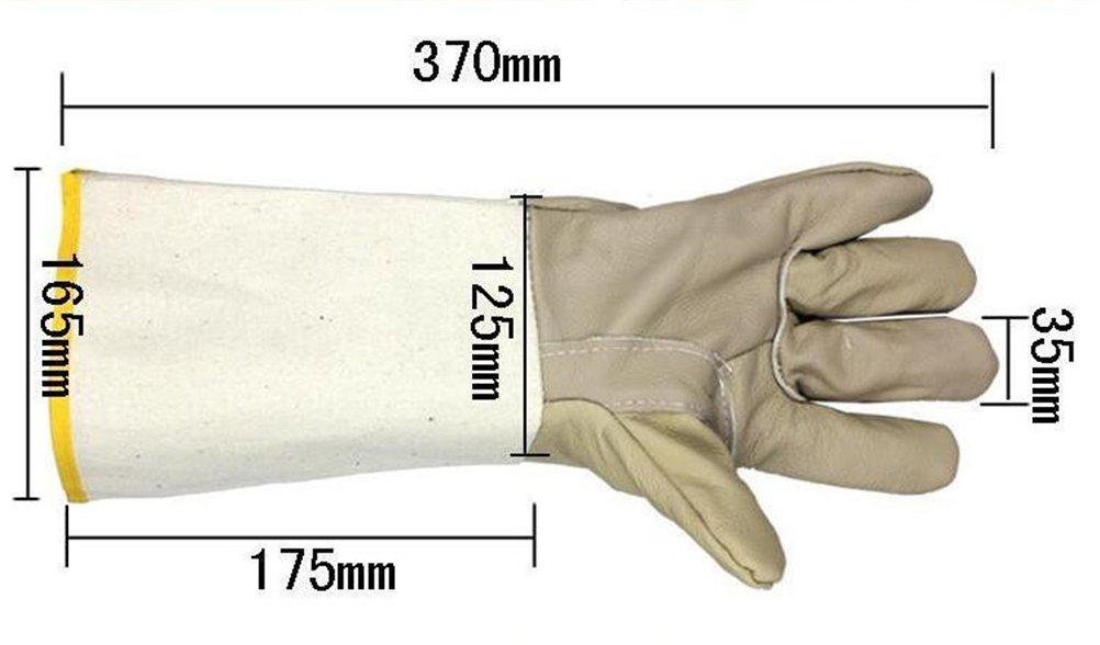 Chifans Pet Gloves Handling Gloves Anti Bite Protective Gloves Long Thick Leather Gloves Animal Handling Gloves Cat Dog Bird Parrot Lizard Anti-bite//Scratch Gardening Wildlife Protection Gloves