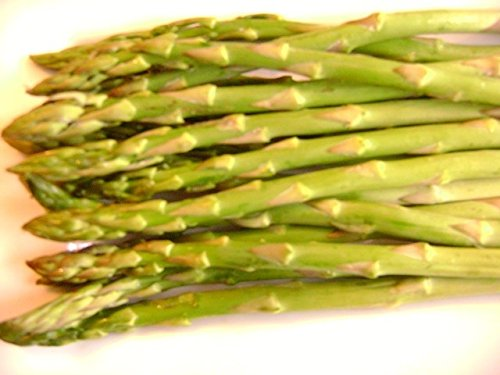 UC 157 Asparagus Plant (Sold in Bundles of 10)