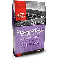 ORIJEN Dry Dog Food, Puppy Large, Biologically Appropriate & Grain Free