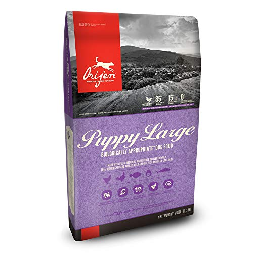 ORIJEN Dry Dog Food, Puppy Large, Biologically Appropriate & Grain Free, 25 Pounds