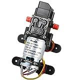 bayite 12V DC Water Pressure Diaphragm Pump with Pressure Switch Self Priming Pump 4 L/Min 1.0 GPM 100 PSI for RV Camper Marine Boat Lawn