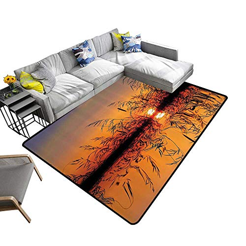 Nature Decor Area Silky Smooth Rugs Lake Sunset with Long Reeds Romantic Botanical Ombre Like Scenery Photo Image Mats Non Slip 6'6