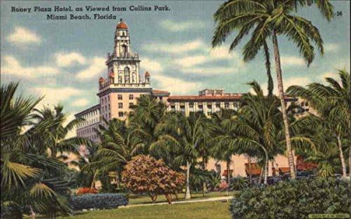Roney Plaza Hotel, as Viewed from Collins Park Miami Beach, Florida Original Vintage - Park Beach Plaza