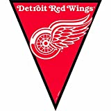 NHL Licensed Detroit Red Wings