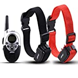 AGPtek®2 Dog Shock Training Collar with Remote Waterproof - Best Reviews Guide