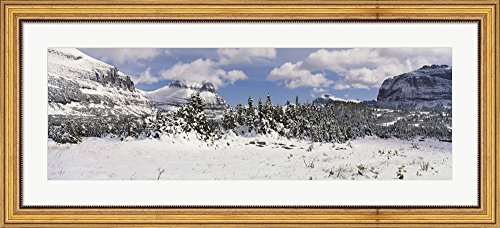 Mountains with trees in winter, Logan Pass, US Glacier National Park, Montana, USA by Panoramic Images Framed Art Print Wall Picture, Wide Gold Frame with Hanging Cleat, 44 x 20 inches