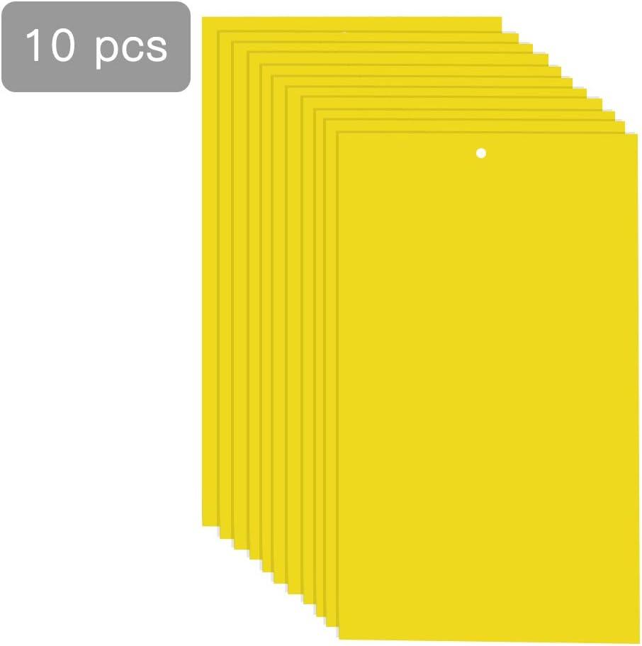SELUXU 10PCS trampas pegajosas Amarillas de Doble Cara para Las ...