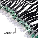 BTF-LIGHTING WS2811 Diffused Digital RGB LED Pixel