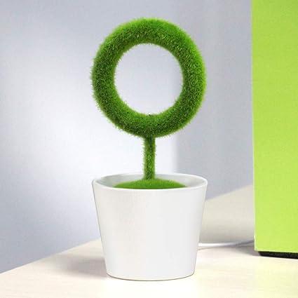 Nordira - Purificador de Aire para Interior de bonsái (portátil ...