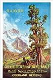 SWITZERLAND TOURISM oberland bern mountain VINTAGE AD POSTER 24X36 nature