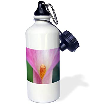 Danita Delimont - Flower - Pink Calla Lily Close up - 21 oz Sports Water Bottle