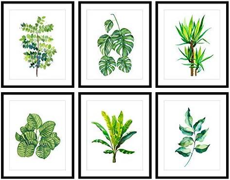 Bestbuddy Pet Set of 6 (8X10) Unframed Green Botanical Print Set Kitchen Room Decor Home Wall Art N035