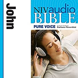 NIV New Testament Audio Bible, Female Voice Only: John
