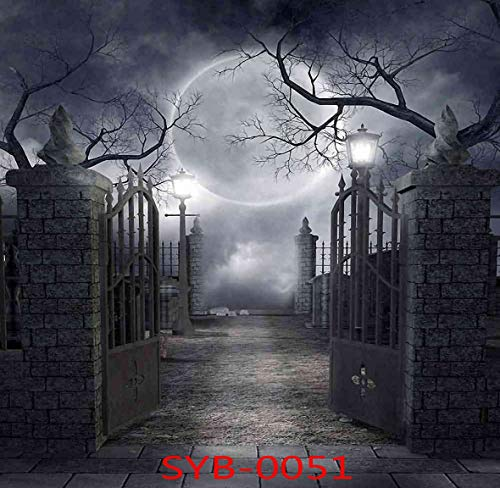 10x10ft Halloween Theme Backdrop Mysterious Door Horror Nights Moon Hallowmas Party Decoration Photography Background Customized Photo Studio Prop SYB-0051 ()