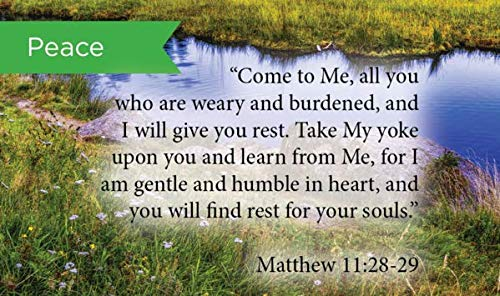 Pass Along Pocket Scripture Cards, Peace, Matthew 11:28-29, Pack of ()