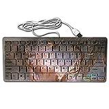 Aries Portable Whisper-Quiet 78Key Wired Usb Ultrathin Mini Keyboard