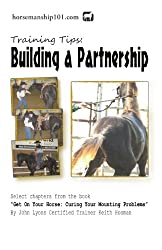 Building a Partnership (Curing Your Mounting Problems Book 6) (English Edition)