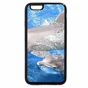 iPhone 6S Plus Case, iPhone 6 Plus Case, Baby Dolphin
