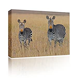 Onsia Sound Art- Safari by George Brits