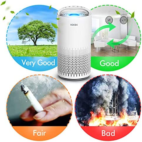 HOKEKI Air Purifier for Large Room with Air Quality Auto Sensor, True HEPA Air Cleaner Filter, 5-in-1 Odor Eliminator with Night Light for Home Office (White)