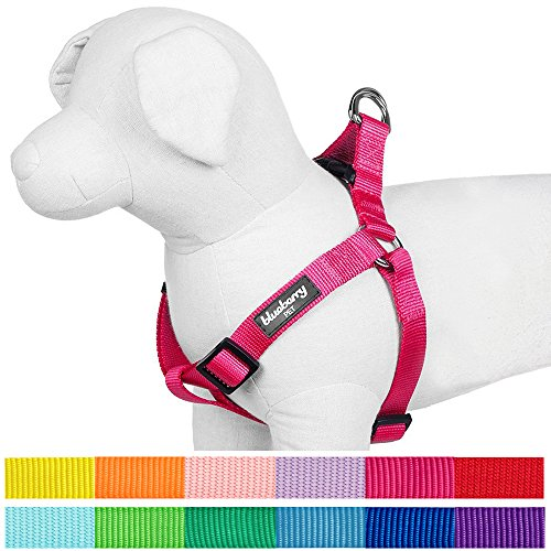 """Blueberry Pet 12 Colors Step-in Classic Dog Harness, Chest Girth 15.5"""" - 19.5"""", French Pink, XS/S, Adjustable Harnesses for Dogs"""