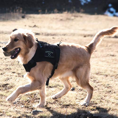 (OneTigris Tactical Service Dog Vest - Water-Resistant Comfortable Military Patrol K9 Dog Harness with Handle (Medium, Black))