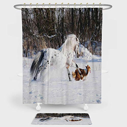 (Horses Shower Curtain And Floor Mat Combination Set Legendary Appaloosa Pony and Sable Border Collie Runs Gallop in Winter Photo Print For decoration and daily use Multicolor)