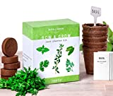 Nature's Blossom Herb Garden Kit - 5 Herbs to Grow from Organic Seeds W/Thyme, Basil, Cilantro, Parsley & Sage. A Complete Beginners Set with All You Need to Start Your Own Garden