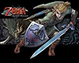 SDore Legend of Zelda Twilight Princess Edible 1/2 Half Sheet Image Frosting Cake Topper Birth. . .