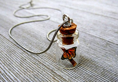 Butterfly in a jar pendant necklace charm with chain Handmade mini Monarch OOAK -