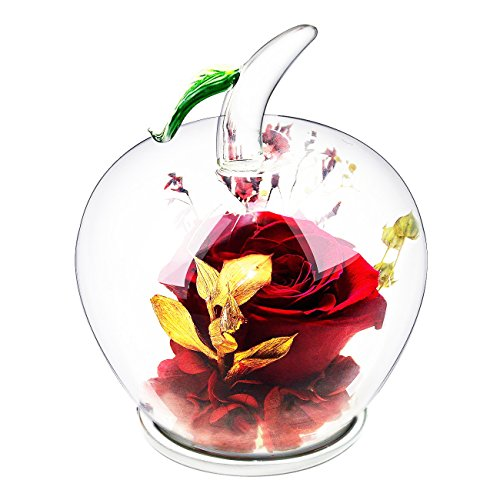 Ideashop Preserved Flower Rose Decor Never Withered Roses Upscale Immortal Flowers with Apple-shaped Glass Gift for Love Ones Valentine's Day Christmas Eve Anniversary Holiday Present Birthday (Red)