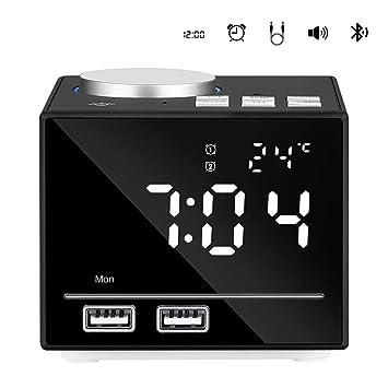 OOLIFENG Radio Despertador FM con Doble Carga USB ...