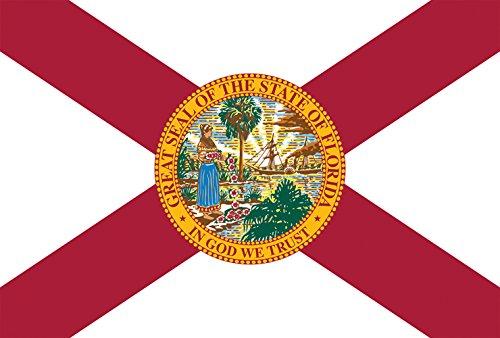florida state flag decorative usa