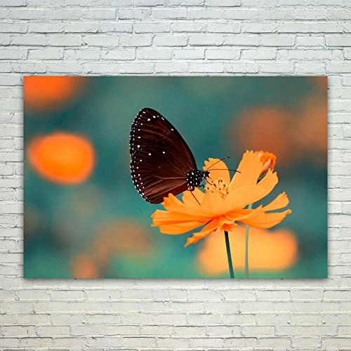 Monarch Palette - Westlake - Poster Print Wall - Butterfly Flower - Modern Picture Photography Home Decor Office Birthday Gift - Unframed - 18x12in (od9 20e)