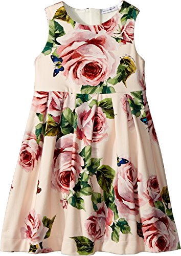 Dolce & Gabbana Kids Baby Girl's Sleeveless Dress (Toddler/Little Kids) Rose Print 4 by Dolce & Gabbana