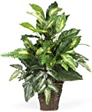 Nearly Natural 6527 Greens with Wicker Decorative Silk Plant, Green