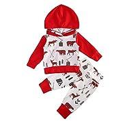 2 Piece Baby Girls Boy Red Deer Bear Cartoon Hoodie Tops + Leggings Outfits Set Clothes 0-2Y