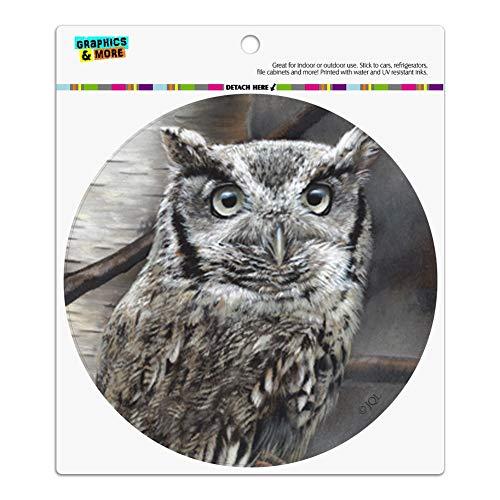 - Graphics and More Screech Owl in a Birch Tree Automotive Car Refrigerator Locker Vinyl Circle Magnet